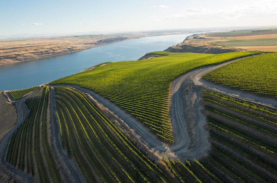 Horse Heaven Hills 2018 red wines