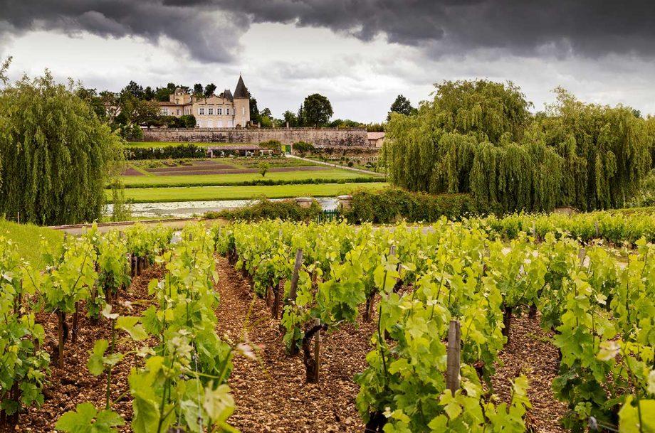 Lafite Rothschild in Bordeaux.