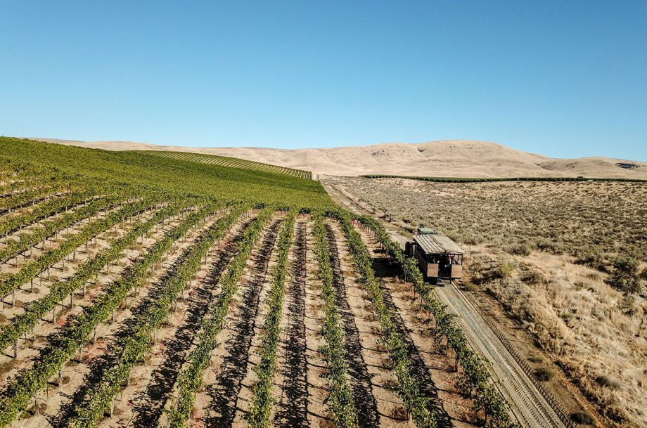 Yakima Valley 2018 red wines