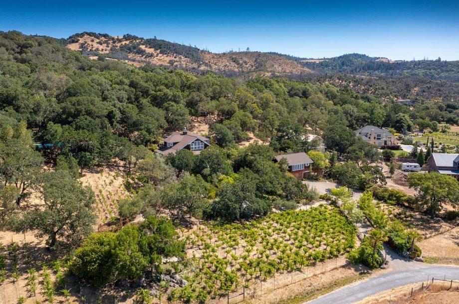 luxury sonoma vineyard property listed by Sotheby's and Carol Sebastiani