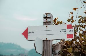 Barolo sign Liv-ex classification 2021 california and italy surge
