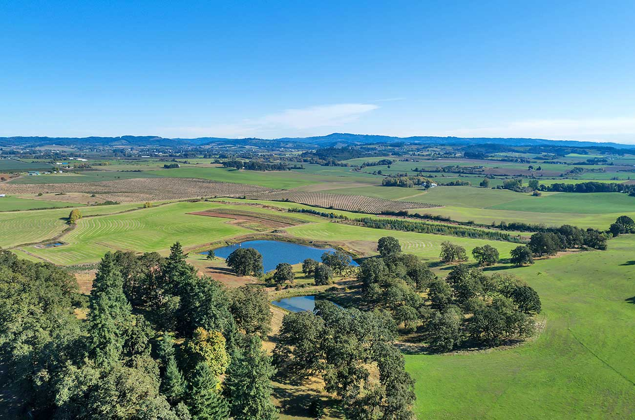 NBA star CJ McCollum buys Oregon vineyard property