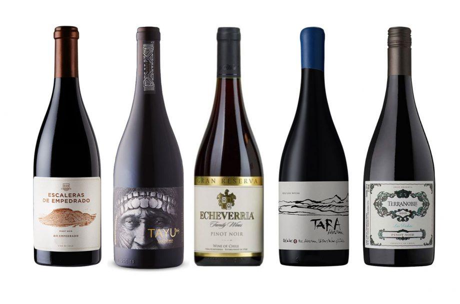 Chile-Pinot-Panel-Bottles