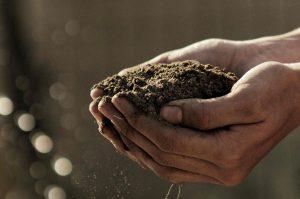 soil signatures