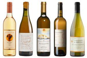 Great orange wines for autumn