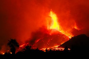 Canary Island volcano eruption effects the harvest