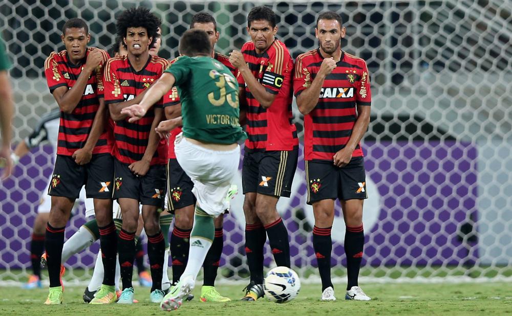Palmeiras v Sport Recife - Brasileirao Series A 2014