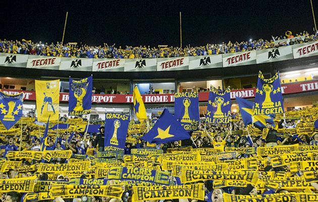 Tigres fans