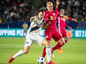 Who Are The MLS Teams