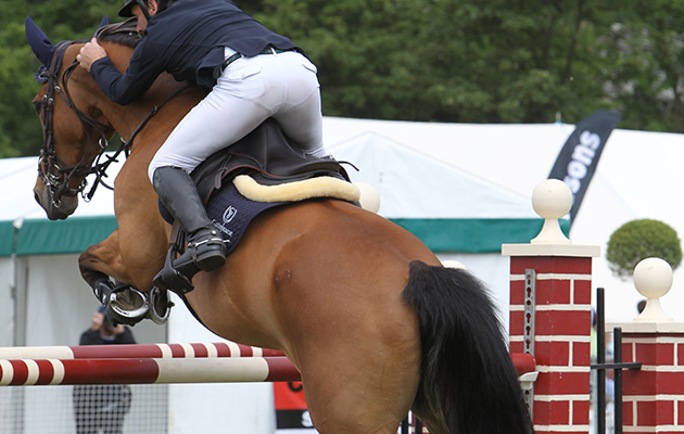 Horse shows in Surrey: Surrey County Show