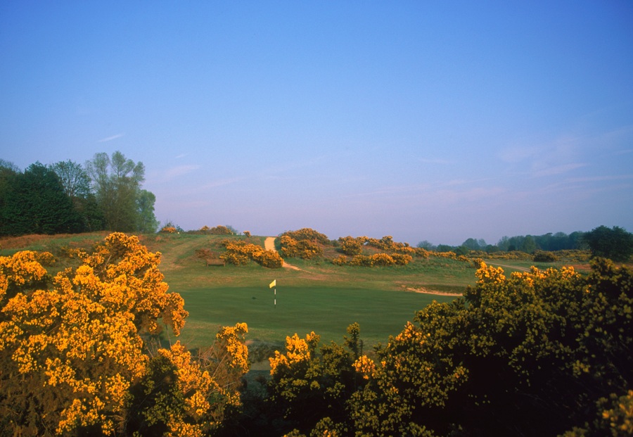 Name the course picture 1