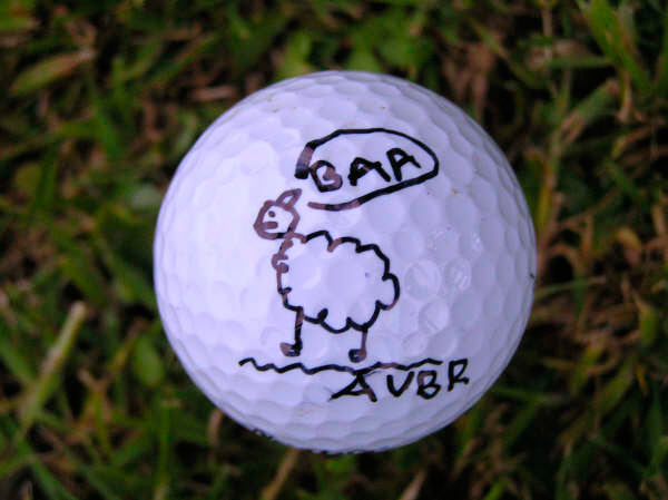 Angharad Rickard, Sharpie golf ball marker competition
