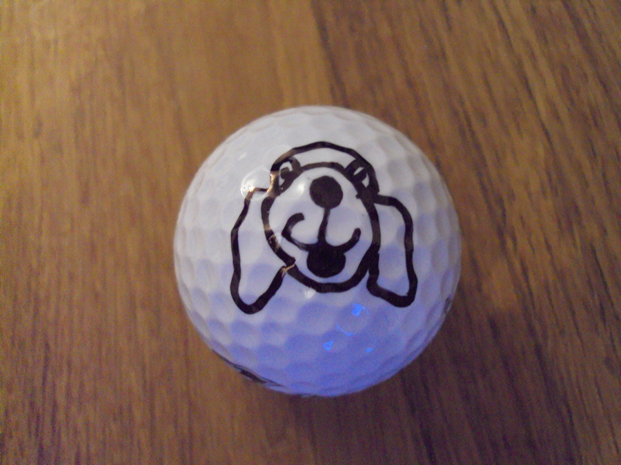 David Hulme, Sharpie golf ball marker competition