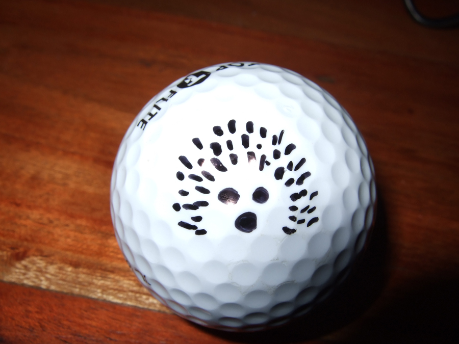 Michael Sharpe, Sharpie golf ball marker competition