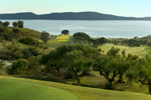 The Bay Course
