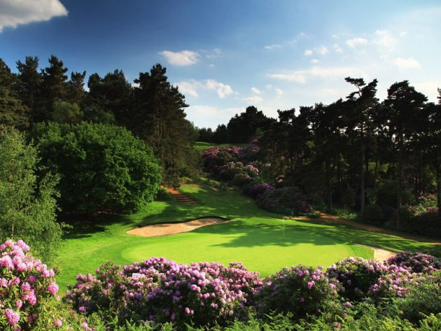 Woburn Golf Club Duke's Course Review