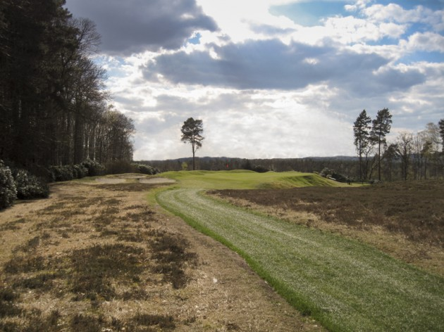 Swinley Forest _Hole_8_new_2
