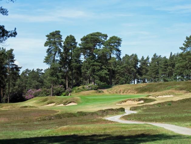 Pine forest golf uk betting marymount london sports betting