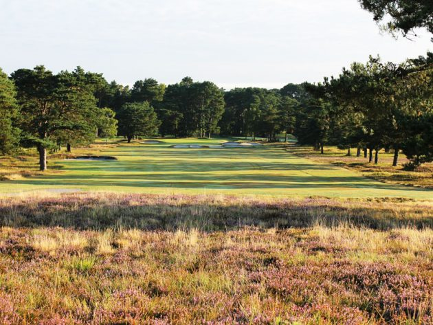 Ferndown Golf Club Old Course Review