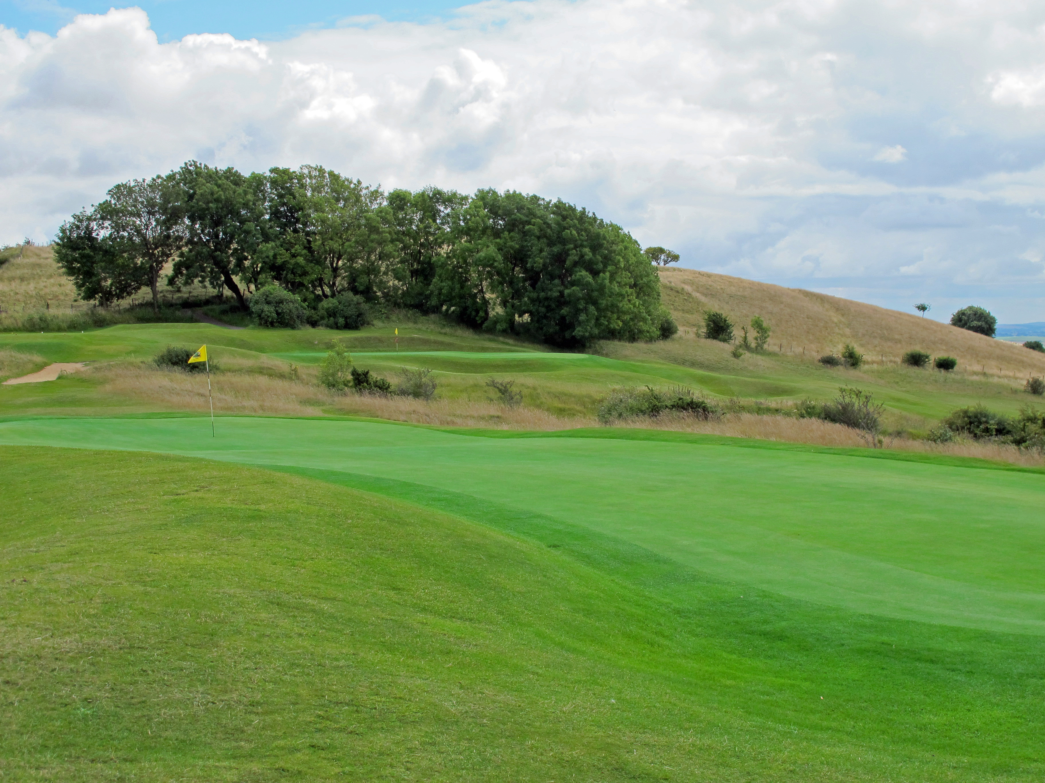pine forest golf uk betting
