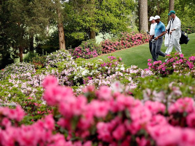 The Flora At Augusta National Golf Club