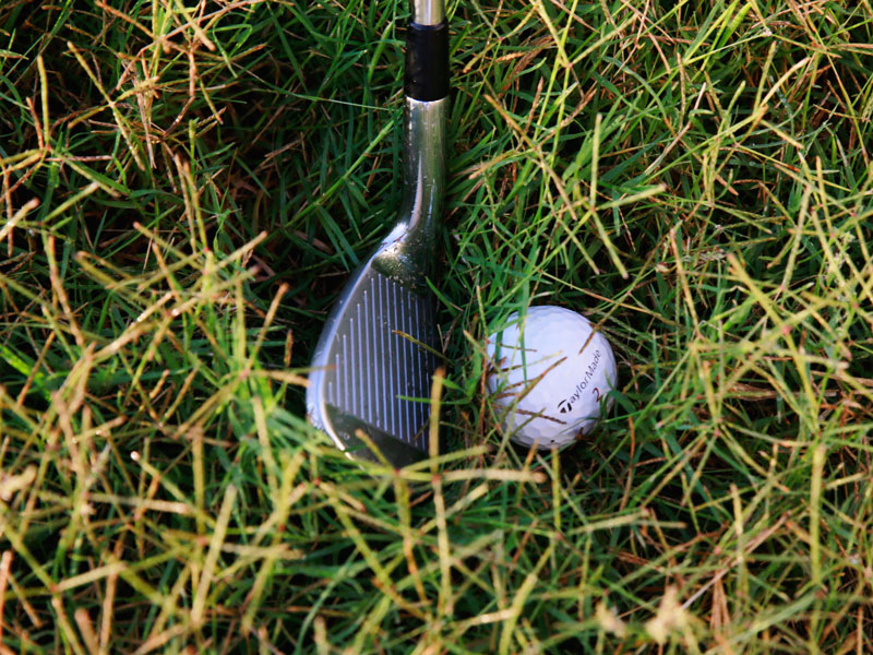 Playing From Thick Rough