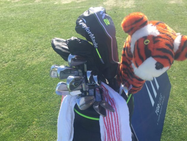 Tiger Woods Using Unbranded Irons