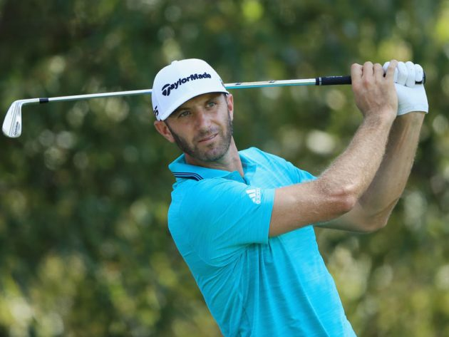 Image result for dustin johnson