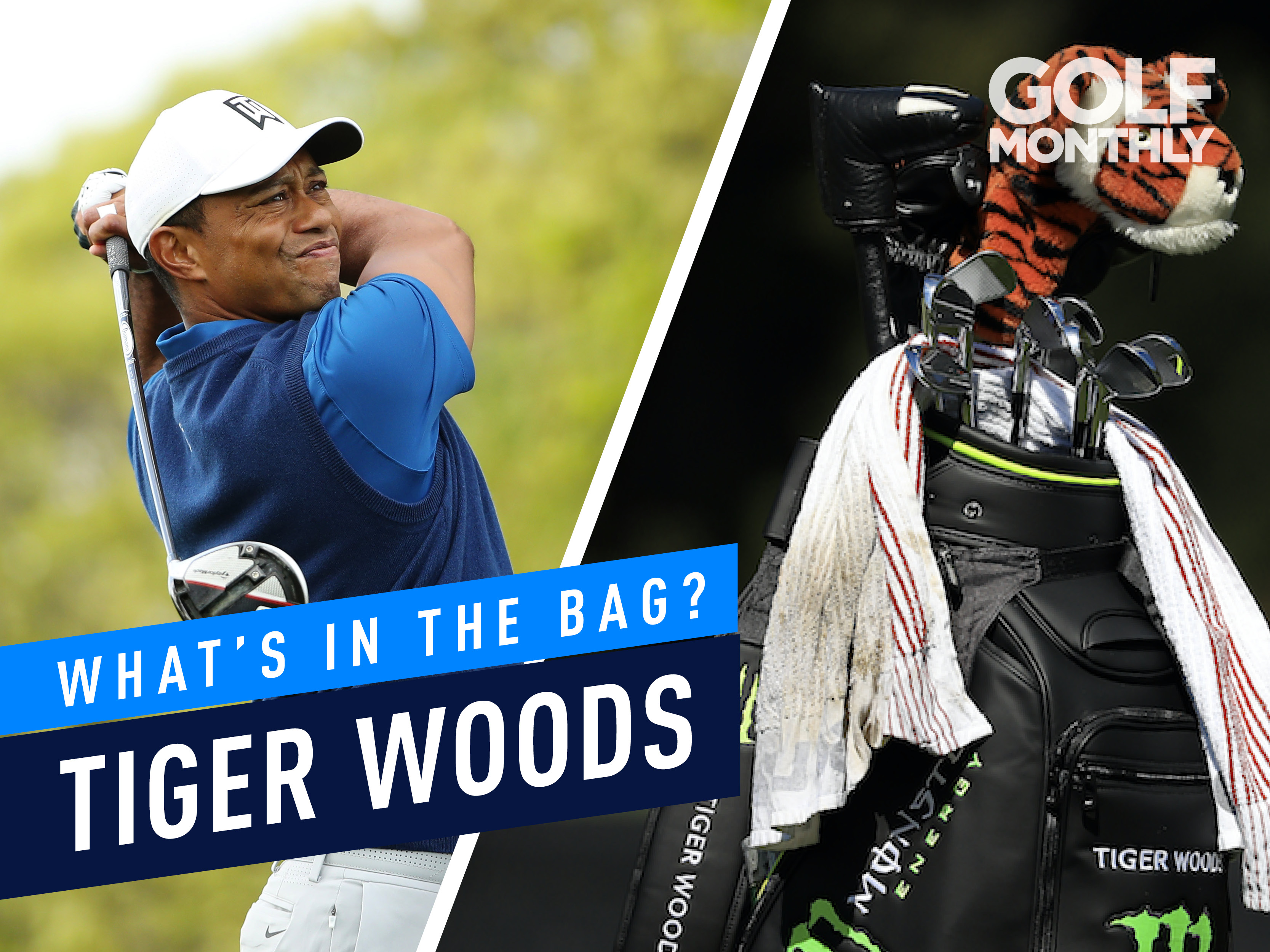 Tiger woods dating now
