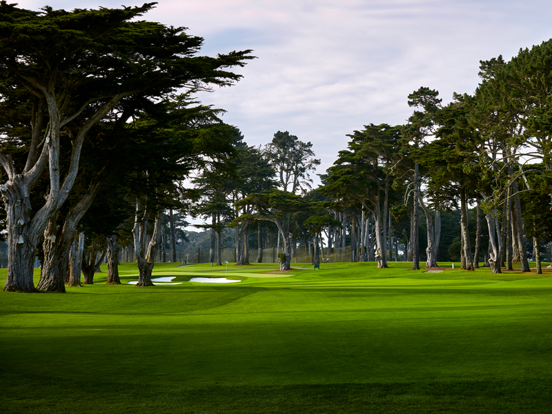 Tpc Harding Park Pga Championship Course Guide Golf Monthly