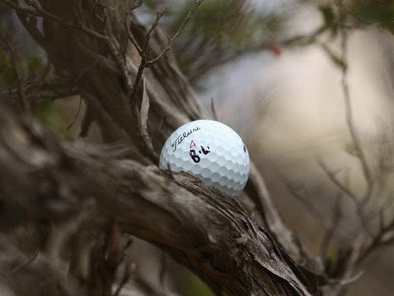 What Is The Golf Rule If My Ball Gets Stuck Up A Tree? - Golf Monthly
