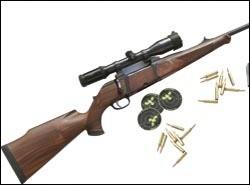 Krico Model 902 rifle