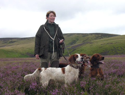 A picking up team grouse shooting in Scotland.