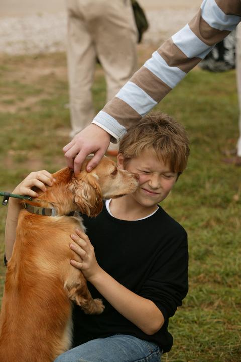 Midland dog licks kid.