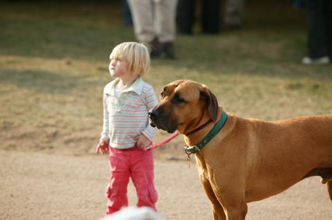 Midland kid with dog.