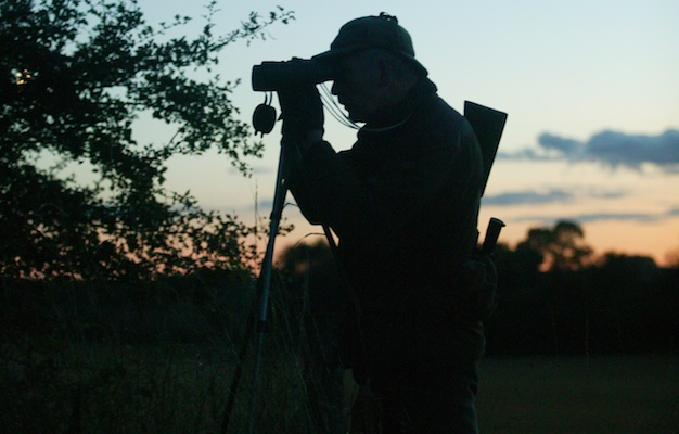 Shooting deer at night - can you use a thermal scope?