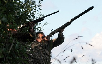 pigeon shooting hide.jpg