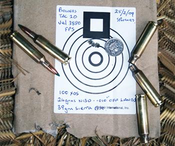 20 calibre target shooting.jpg