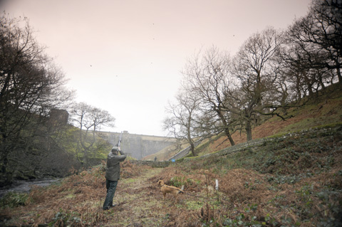 Game shooting at Swinton Park