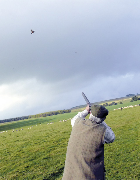 Game shooting at Greystoke 4