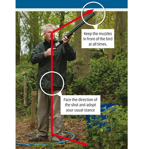 Clay shooting instruction