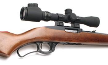 Ruger 96-22m rimfire rifle 350.jpg