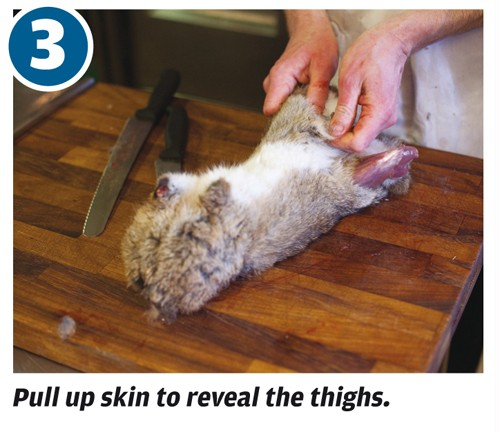 How to cut up a rabbit for cooking