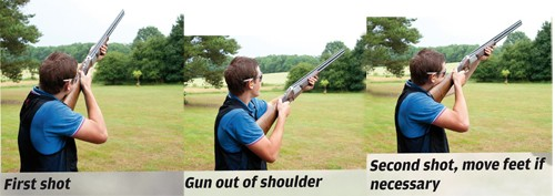 Pigeon shooting lesson