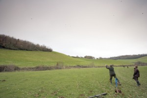 Pheasant shooting - discover what you need to know right here