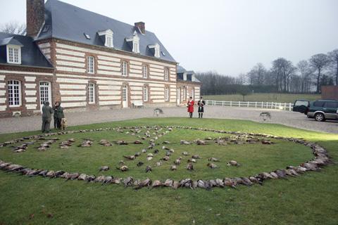 Pheasant shooting Mahomet Normandy