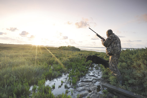 0740e58238d3f Successful coastal wildfowling requires a good knowledge of the tides.  Still, this focused my mind and I made a determined point of making every  chance ...