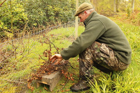 gamekeeper setting a trap