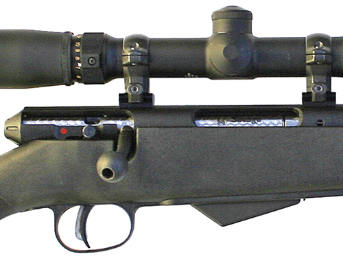 ARMSLIST - For Sale: Savage Model 25 .17 Hornet