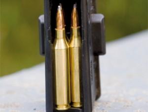 bullets_rifle
